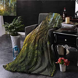 Landscape Commercial Grade Printed Blanket National Park in Cape Breton Highlands Canada Forest Path Trees Tranquility Photo Queen King W70 x L70 Inch Blue Green