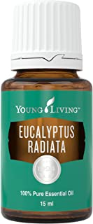 Eucalyptus Radiata Essential Oil 15ml by Young Living Essential Oils