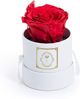 Fleur Magique | Preserved Rose Small Round Classic White Box - Red Rose