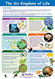 NewPath Learning-34-6112 The Six Kingdoms of Life Poster - Laminated, Full-Color, 23' x 35'