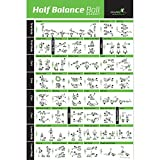 NewMe Fitness Half Balance Ball Workout Poster - Laminated :: Illustrated Guide with 40 Toning and Strengthening Exercises :: Hang in Your Home or Gym, for Men & Women, 18' x 27'