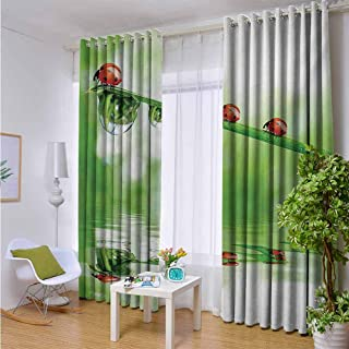 Andrea Sam Patio Curtains Ladybugs,Ladybugs on A Stem Over The Water Striped Animals Fresh Environmental Life Image,Red Green,W84 xL84 Thermal Insulated Water Repellent Drape for Balcony