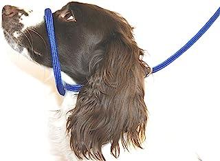 Dog & Field - Correa de Nailon Trenzado, Color Azul