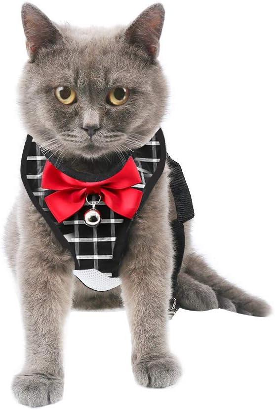 Ajustable y Suave para pasear al Gato arn/és de Malla Tipo Chaleco para Gatos peque/ños medianos Grandes Mascotas Gatito Cachorro Conejo Arn/és para Gato y Correa a Prueba de Escape