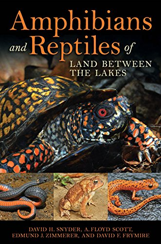Image OfAmphibians And Reptiles Of Land Between The Lakes