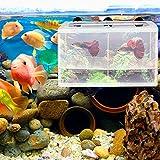 Rete di allevatori per acquari,Contenitore per allevamento pesci ,Rete di separazione per Allevamento di Pesci di Grandi Dimensioni ,Rete di incubazione per avannotti con Ventosa per Acquario