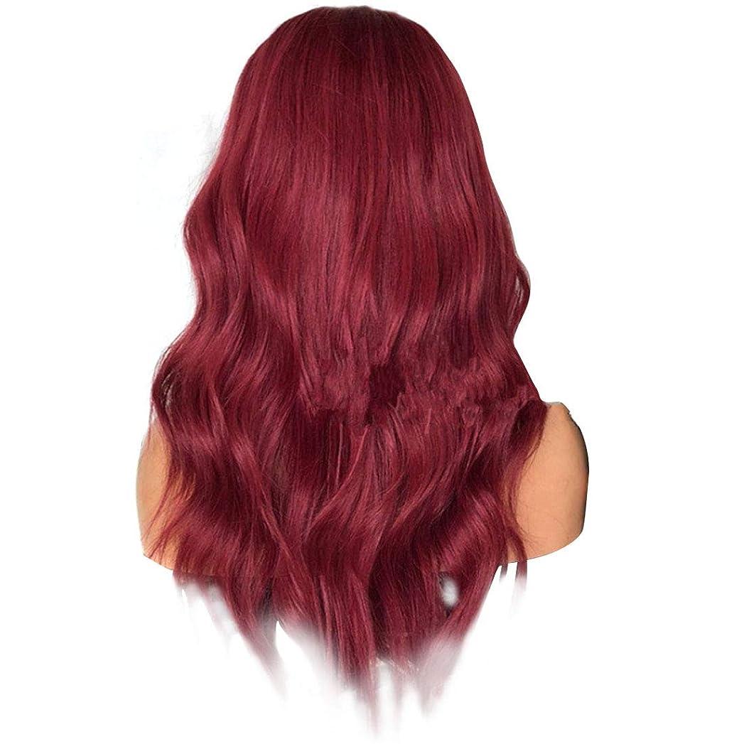 農業の虎カセットJIANFU 女性 ふわふわ 現実的な かつら 複数の色 大きな波 長いウィッグ 耐熱 ウィッグ 長さ65cm (Color : Wine red)