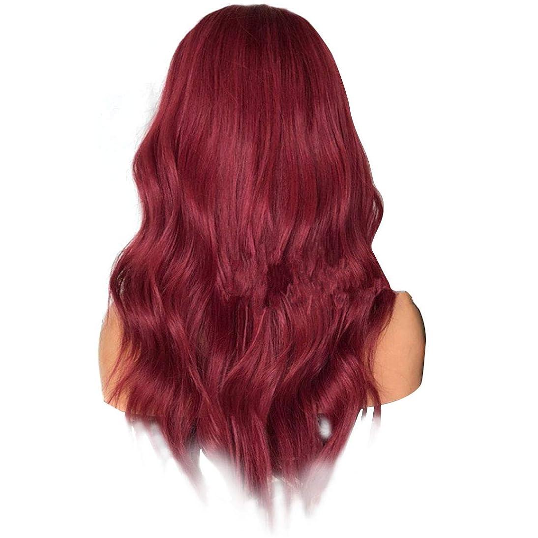 シンボル腐敗ヘビJIANFU 女性 ふわふわ 現実的な かつら 複数の色 大きな波 長いウィッグ 耐熱 ウィッグ 長さ65cm (Color : Wine red)