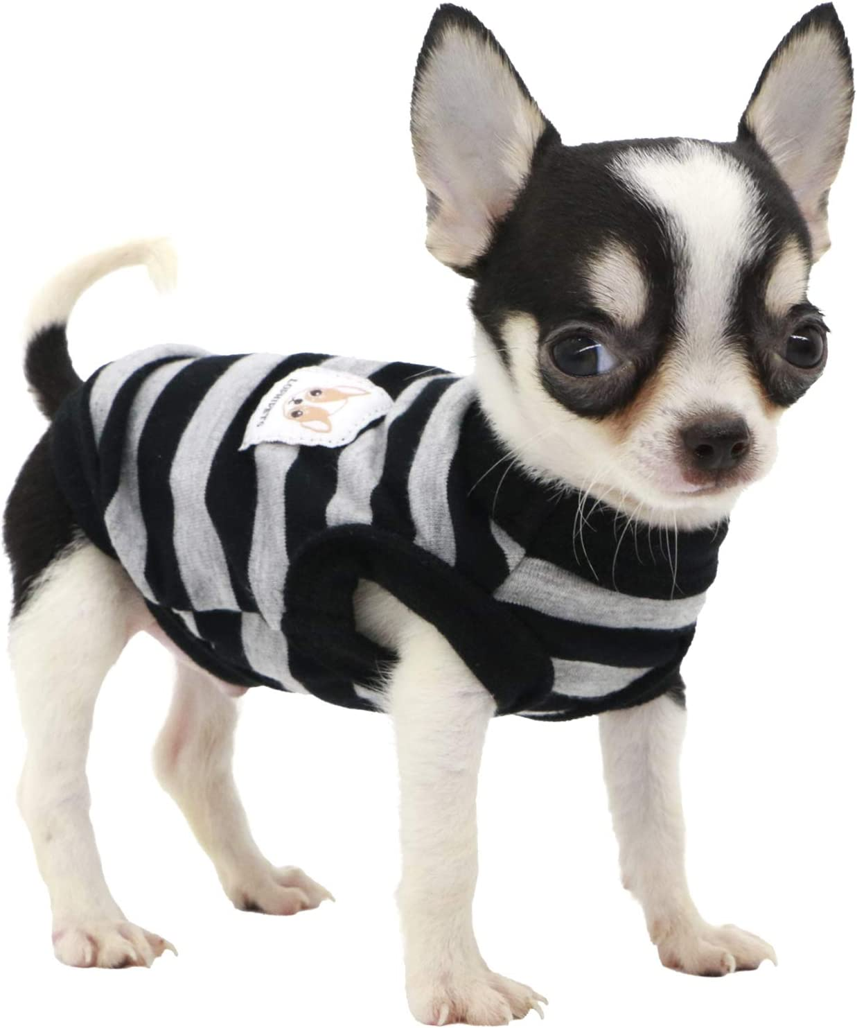 Lophipets 100/% Cotton Striped Dog Shirts for Puppy Small Dogs Chihuahua