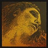 Pirastro 415022 Evah Pirazzi GOLD Violine Satz (G-Gold, E-Kugel) mittel, langgelegt