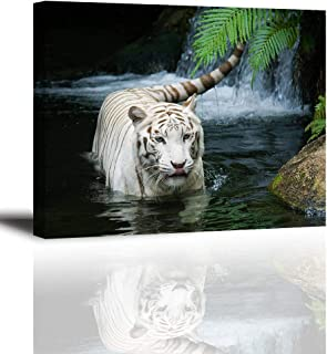 White Tiger Picture Decor for Bedroom, PIY Gorgeous Wall Art of Ivory Tigress in Pond, Wild Life Theme Canvas Painting Prints on Canvas (1