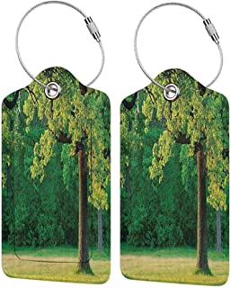 Multicolor luggage tag Tree of Life Fresh Young Leaves of Oak Branches in the Park Tranquil Nature Landscape Hanging on the suitcase Green Brown W2.7