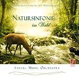 CD Natursinfonie im Wald (Sinfonia della natura nel bosco): musica strumentale per un sott...