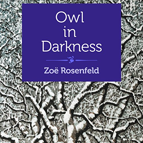 Owl in Darkness audiobook cover art