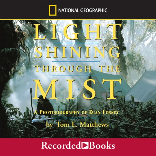 Light Shining Through the Mist audiobook cover art