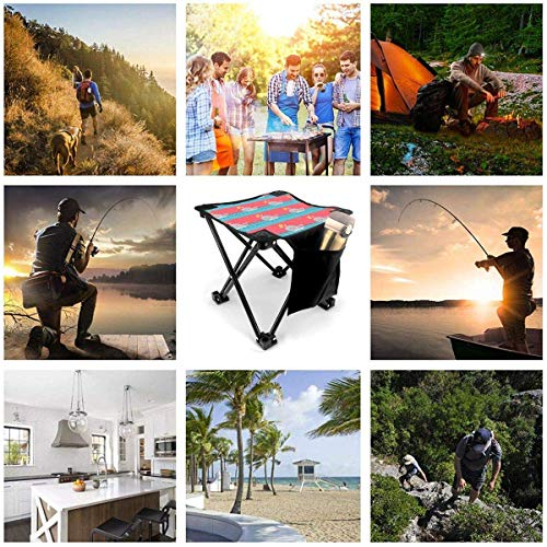 LLOOP Camping Stool Folding Tennis Whale Cute Baseball Pink Portable Chair Camping Hunting Fishing Travel with Carry Bag