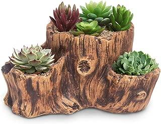 10l plant pot