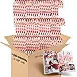 Candy Cane Peppermint Flavored | 72 Pieces Individually Wrapped | Free Creative Idea Booklet Included. (Red & White)