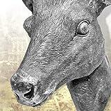 Hirschgeweih Hirschkopf Geweih 10-Ender in Silber, Metall-Optik 30 x 40 cm, Figur Skulptur Deko - 5