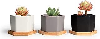 T4U 2.75 Inch Ceramic Succulent Pot with Bamboo Tray Small Pack of 3, Matt Hexagon Bonsai Planter Plant Cactus Flower for Office Home Kitchen Desktop Garden Decor