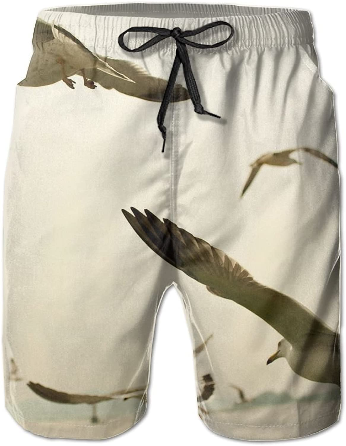 a650cddd87d22 Tydo Quick Quick Quick Dry Beach Shorts Seagulls Painting Swim Trunks Surf  Board Pants With Pockets For Men 16138a