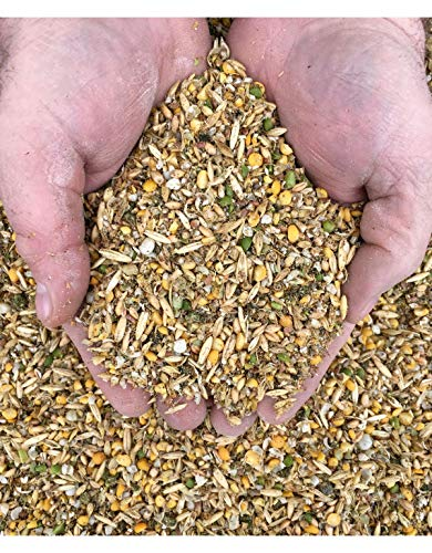 New Country Organic Layer Feed