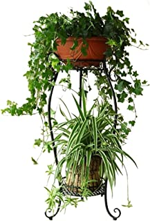 DAZONE Metal 2 Tiers Plant Stand Indoor Floor Model Potted Plant Stand (Black)