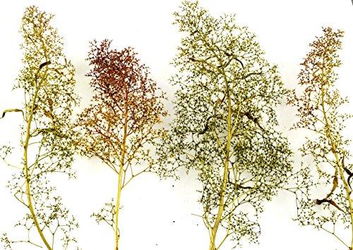 WWS Árboles Naturales Mixtos de Teloxys – Modelismo Ferroviario, Maquetas, Escenografías