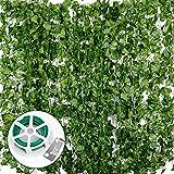 Plantas Hiedra Artificial (24pcsx2m) Hiedra Hojas de Vid Artificial Enredadera Guirnalda Decorativa Decoración Hogar Escalera Ventana Balcón Valla Jardín Boda Interior Exterior, 20m Lazo de Torcedura