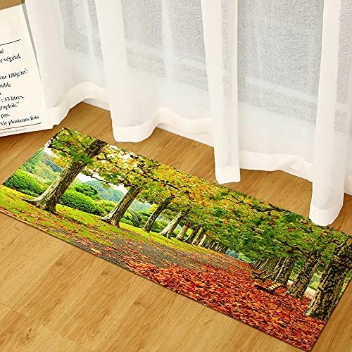 OPLJ Alfombrillas de Cocina Modernas, alfombras de Puerta de Entrada de decoración del hogar, alfombras de Sala de Estar, alfombras de baño Antideslizantes A3 60x180cm