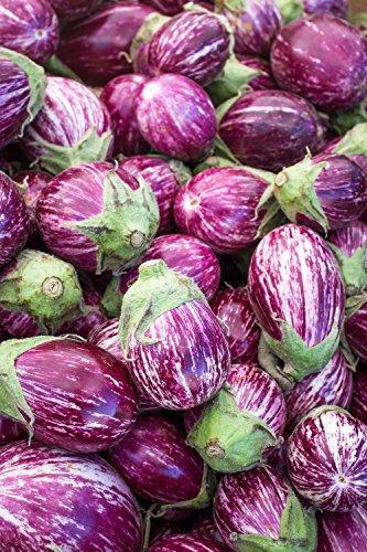 Melanzana, melanzana'Tsakoniki' - varieta bianco-viola - 110 semi