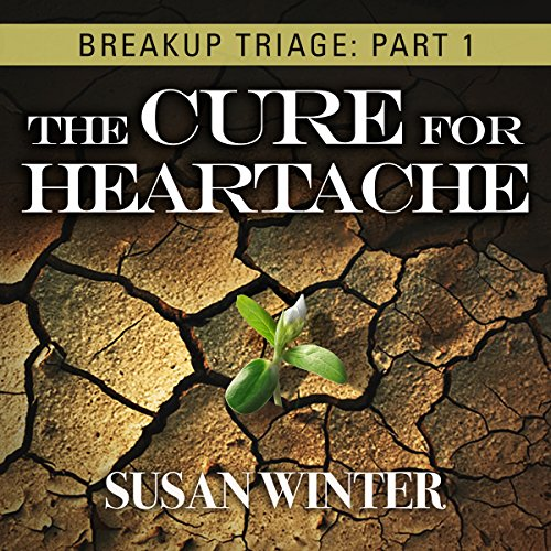 Breakup Triage audiobook cover art