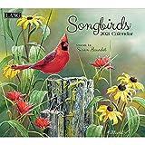 Songbirds 2021 Calendar