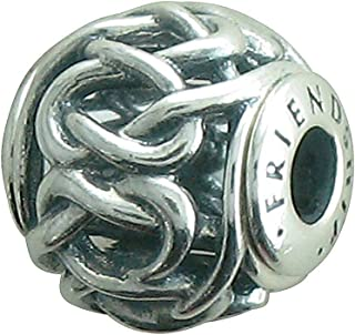 FRIENDSHIP ESSENCE COLLECTION charm in Silver - 796057