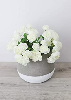 "Afloral Mini White Cream Silk Ranunculus Bush - 10"""