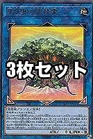 【3枚セット】遊戯王 SLT1-JP033 聖天樹の大精霊 (日本語版 レア) - セレクション - SELECTION 10