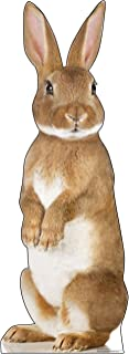 Advanced Graphics Bunny Rabbit Life Size Cardboard Cutout Standup