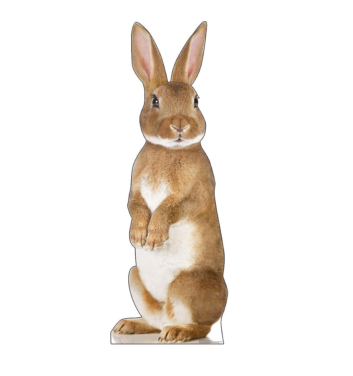 Advanced Graphics Bunny Rabbit Life Size Cardboard Cutout Standup