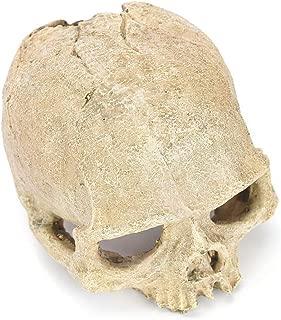 Clearance Sale!DEESEE(TM)🍀🍀Fish Tank Aquarium Ornament, Terrarium Decorations Resin Skull Human Skeleton