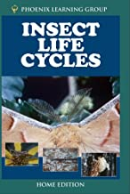 Insect Life Cycles Home Use
