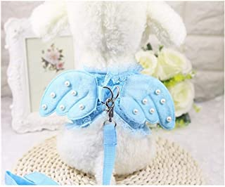 SMXGF Angel Princess Dog Breast Straptraction Dog Traction Rope Kitty Kitten Cat Out To Pull Rope Rope Set Pet Chest Strap...