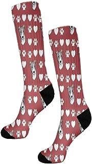 Italian Greyhound Dog Red Paw Heart Fun 11