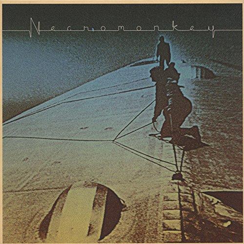 Necromonkey: (Black) a Glimpse of Possible Endings (Vinyl)
