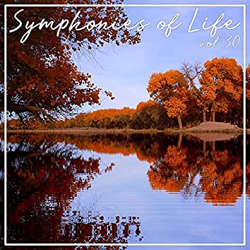 Symphonies of Life, Vol. 30 - Rheinberger Organ; Concertos Ops. 137 & 177