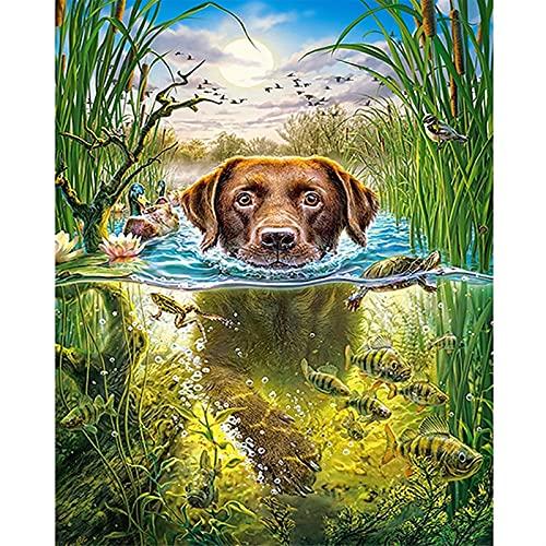 YANYAN Ring Store 5D DIY. Diamant Malerei Hund Schwimmen volle runde bohre wohnkultur malerei kreuzstich Stickerei mosaikbild (Size : 45x60cm)