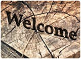 deco-mat Felpudos Exterior – felpudos Entrada casa, alfombras casa, Alfombrilla Moderna, Alfombrilla Antideslizante, felpudos Originales Bienvenido – 50x70 cm