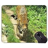 ロックエッジ付きマウスパッド、ジャガーワイルドヒョウ滑り止めラバーベースマウスパッド