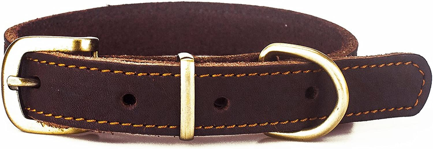 Mowham Genuine Leather Dog Collar For Medium Dogs Male Female Size1 x22