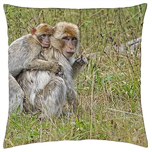 N\A Cojín Decorativo Mono Animal Joven Mono de Berbería