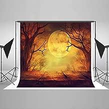 Kate 10X10ft (300cmX300cm) Halloween Backdrops Photography Background Pumpkin Wood Floor Backdrops
